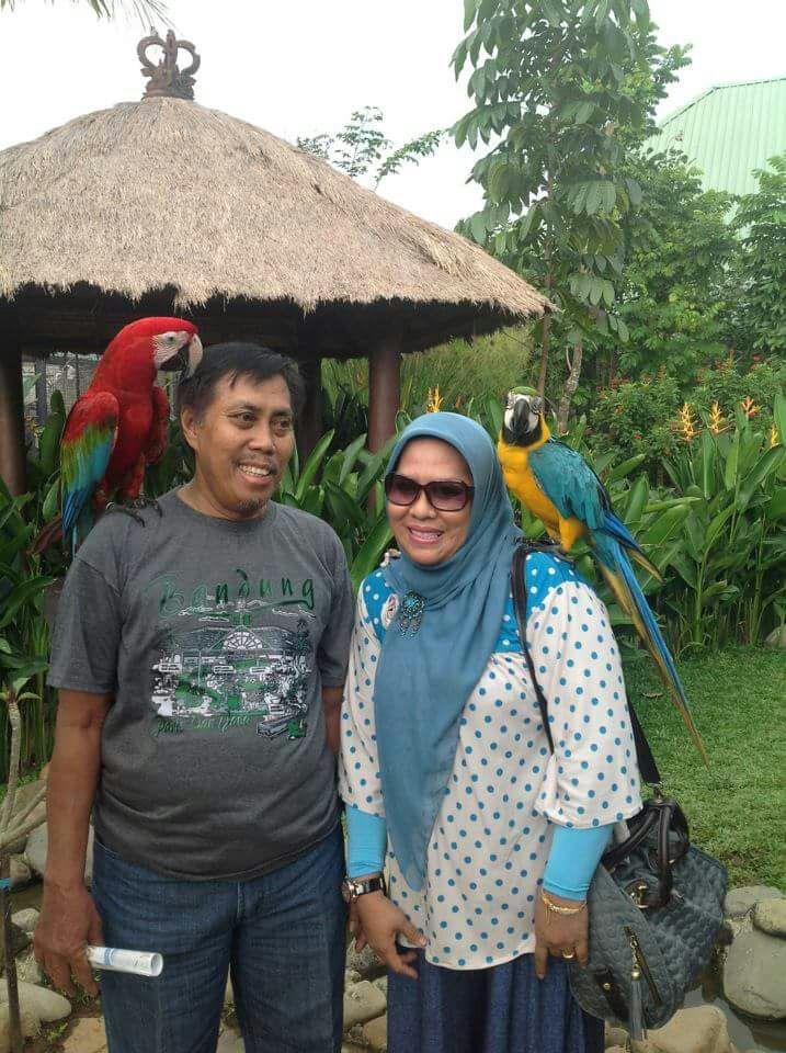 In Memoriam Syamsuri Ismail