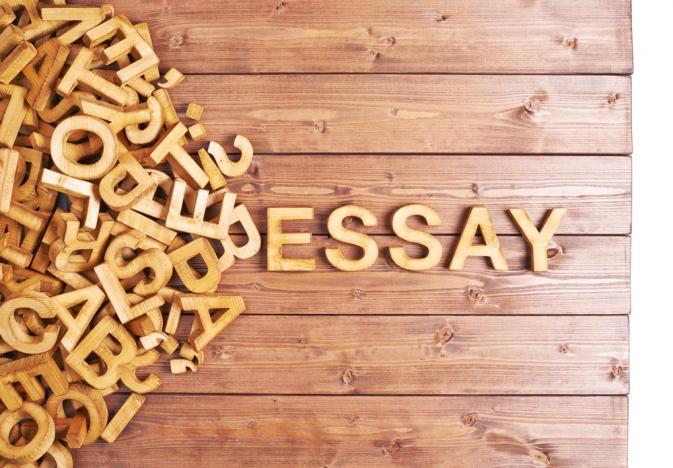 Badaruddin Amir: Esai itu Tulisan yang Genit